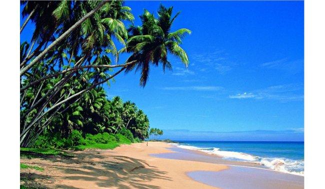 Šri Lanka - 8 dana